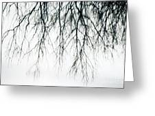 Foggy Reflection Greeting Card