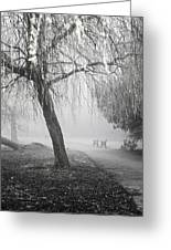 Foggy Willow Greeting Card