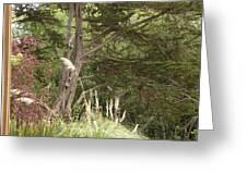 Foliage Art Greeting Card