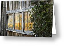 Foliage Reflections Greeting Card