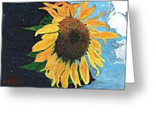 Follow The Sun Greeting Card