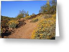 Follow The Trail Greeting Card