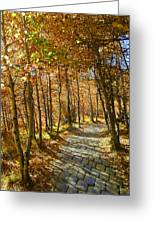 Follow The Yellow Brick Rd Greeting Card