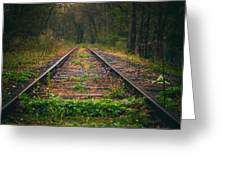 Following The Tracks Greeting Card