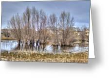 Folsom Dried Pond  Greeting Card
