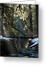 Footbridge Near Sol Duc Falls, Olympic Greeting Card