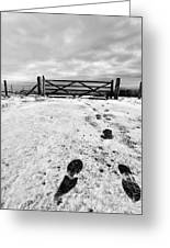 Footprints In The Snow Greeting Card by John Farnan