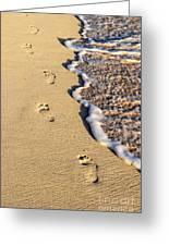 Footprints On Beach Greeting Card