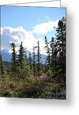 For Spacious Skies Greeting Card