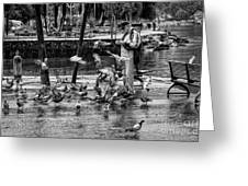 For The Birds Bw1 Greeting Card