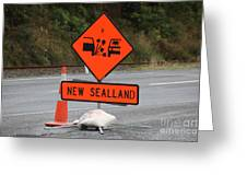 For Those Who Traveld Through New Zealand Greeting Card