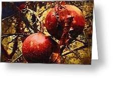 Forbidden Fruit Greeting Card