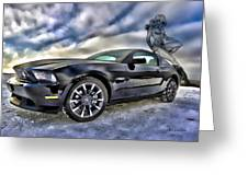 Ford Mustang - Featured In Vehicle Eenthusiast Group Greeting Card