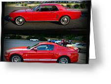 Ford Mustang Old Or New Greeting Card