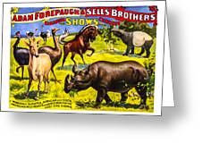 Forepaugh And Sells Wondrous Wild Beasts Greeting Card