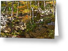 Forest Above The Cave Greeting Card