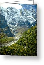 Forest And Mountains In Himalayas Greeting Card