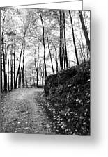 Forest Black And White 6 Greeting Card