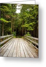 Forest Bridge Greeting Card