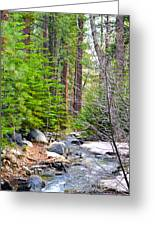 Forest Creek 2 Greeting Card