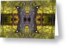 Forest Disaster C Greeting Card