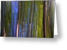Forest Dreams Greeting Card