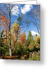 Forest Edge Autumn Pocono Mountains Pennsylvania Greeting Card