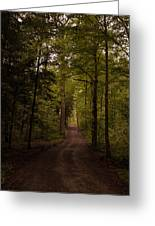 Forest Entry Greeting Card