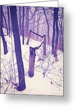 Forest Fence Greeting Card