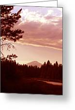 Forest Glow Greeting Card