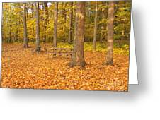 Forest Gold Greeting Card
