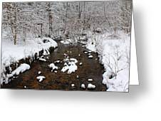 Forest Hill Creek Greeting Card