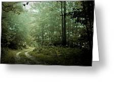 Forest In The Mist Greeting Card