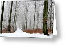 Forest In Winter Greeting Card