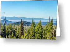Forest Landscape Greeting Card