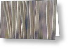 Forest Of Dreams 2  Panorama Greeting Card