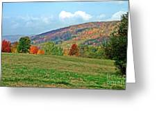 Forest Of Fire Greeting Card