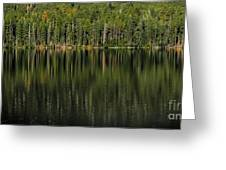 Forest Of Reflection Greeting Card