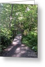Forest Passage Greeting Card