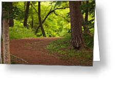 Forest Path Greeting Card by Brad Brizek