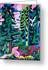 Forest Path In Summer Greeting Card