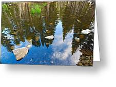 Forest Reflection Greeting Card