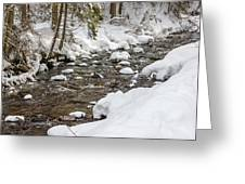 Winter Forest River Greeting Card