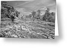 Forest Slope And Sky In Black And White Greeting Card