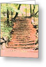 Forest Steps Greeting Card