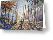 Forest Walking Greeting Card