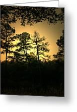 Forest Waltz Greeting Card