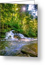 Forest Waterfall Greeting Card
