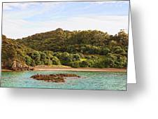 Forested Coast Line Greeting Card