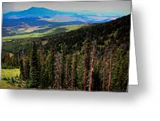 Forested Volcanic Slopes Greeting Card